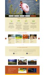 Web giá rẻ du lịch 04